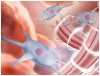 endermologia sanok - likwidacja pierwszych zmarszczek
